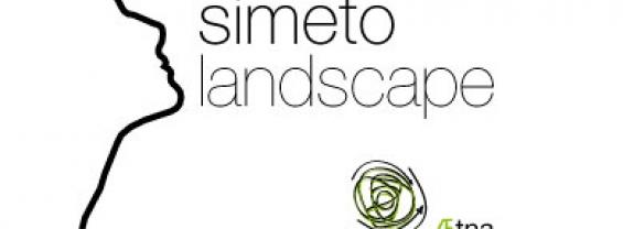 Aetna landscape 2012